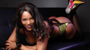 chicago ebony escort